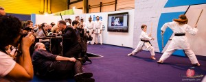Martial arts display at the Photography Show 2014